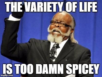 Too Damn High Meme | THE VARIETY OF LIFE IS TOO DAMN SPICEY | image tagged in memes,too damn high | made w/ Imgflip meme maker