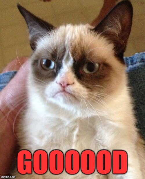 Grumpy Cat Meme | GOOOOOD | image tagged in memes,grumpy cat | made w/ Imgflip meme maker