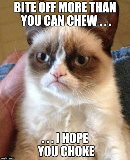 Hope You Die | BITE OFF MORE THAN YOU CAN CHEW . . . . . . I HOPE YOU CHOKE | image tagged in memes,grumpy cat,swag,descartes | made w/ Imgflip meme maker