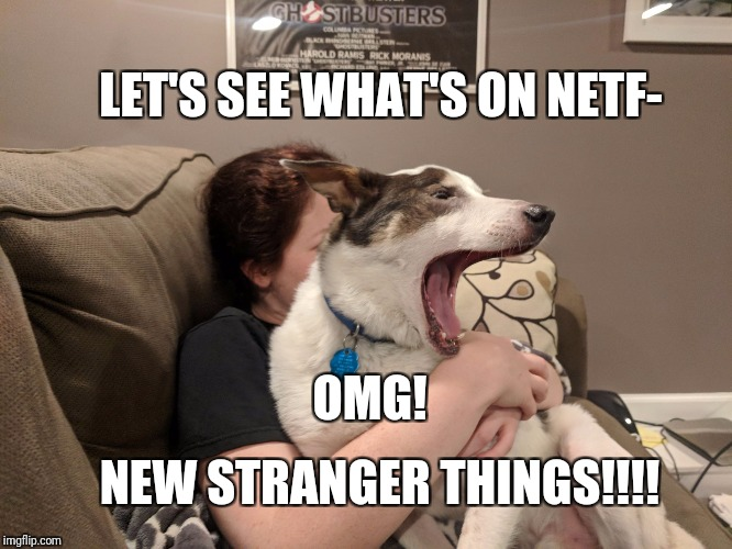 It's that time of the year | LET'S SEE WHAT'S ON NETF- NEW STRANGER THINGS!!!! OMG! | image tagged in stranger things,netflix,what a twist | made w/ Imgflip meme maker