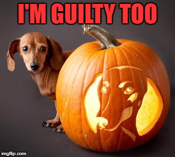 I'M GUILTY TOO | made w/ Imgflip meme maker