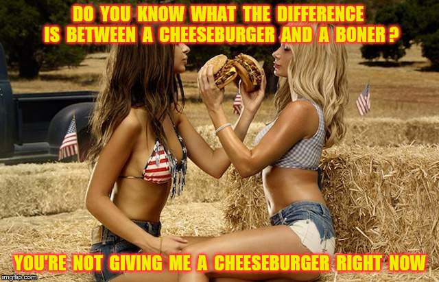 Cheeseburger and a boner | DO  YOU  KNOW  WHAT  THE  DIFFERENCE  IS  BETWEEN  A  CHEESEBURGER  AND  A  BONER ? YOU'RE  NOT  GIVING  ME  A  CHEESEBURGER  RIGHT  NOW | image tagged in memes,fast food,sex,funny | made w/ Imgflip meme maker