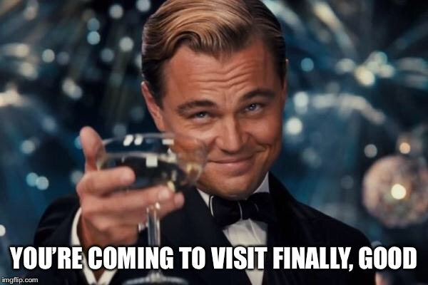 Leonardo Dicaprio Cheers Meme | YOU'RE COMING TO VISIT FINALLY, GOOD | image tagged in memes,leonardo dicaprio cheers | made w/ Imgflip meme maker