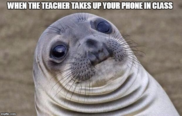 Awkward Moment Sealion Meme | WHEN THE TEACHER TAKES UP YOUR PHONE IN CLASS | image tagged in memes,awkward moment sealion | made w/ Imgflip meme maker