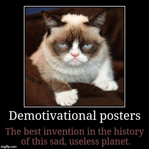 Demotivationals are just right for grumpy cat. }< | Demotivational posters | The best invention in the history of this sad, useless planet. | image tagged in funny,demotivationals,memes,grumpy cat,stop reading the tags | made w/ Imgflip demotivational maker