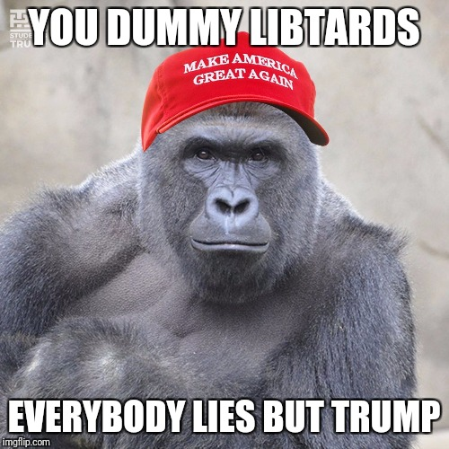 he alone tells the truth | YOU DUMMY LIBTARDS EVERYBODY LIES BUT TRUMP | image tagged in maga harambe,trump,lies,truth,libtards | made w/ Imgflip meme maker