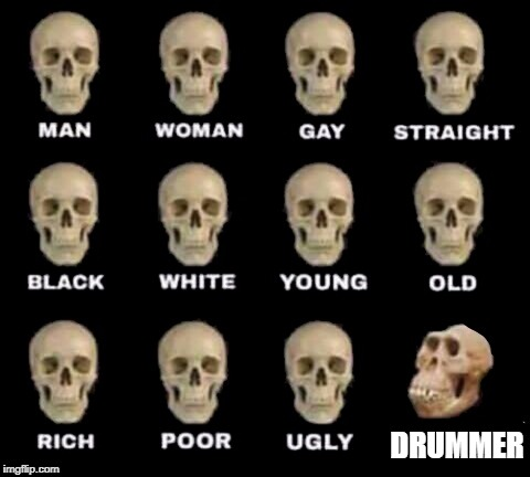 guys in the band | DRUMMER | image tagged in idiot skull | made w/ Imgflip meme maker