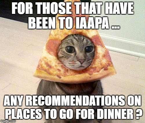 pizza cat | FOR THOSE THAT HAVE BEEN TO IAAPA ... ANY RECOMMENDATIONS ON PLACES TO GO FOR DINNER ? | image tagged in pizza cat | made w/ Imgflip meme maker