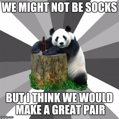 Pickup Line Panda |  WE MIGHT NOT BE SOCKS; BUT I THINK WE WOULD MAKE A GREAT PAIR | image tagged in memes,pickup line panda | made w/ Imgflip meme maker