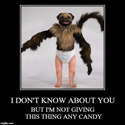 I DON'T KNOW ABOUT YOU | BUT I'M NOT GIVING THIS THING ANY CANDY | image tagged in funny,demotivationals,halloween,puppy monkey baby | made w/ Imgflip demotivational maker