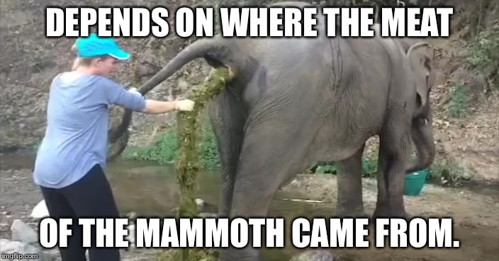 Elephant crap | DEPENDS ON WHERE THE MEAT OF THE MAMMOTH CAME FROM. | image tagged in elephant crap | made w/ Imgflip meme maker