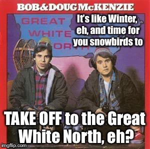 Ready hosers? | . | image tagged in great white north,mckenzie brothers,snowbirds,take off,sctv,memes | made w/ Imgflip meme maker