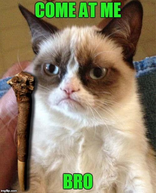 Grumpy Cat Meme | COME AT ME BRO | image tagged in memes,grumpy cat | made w/ Imgflip meme maker