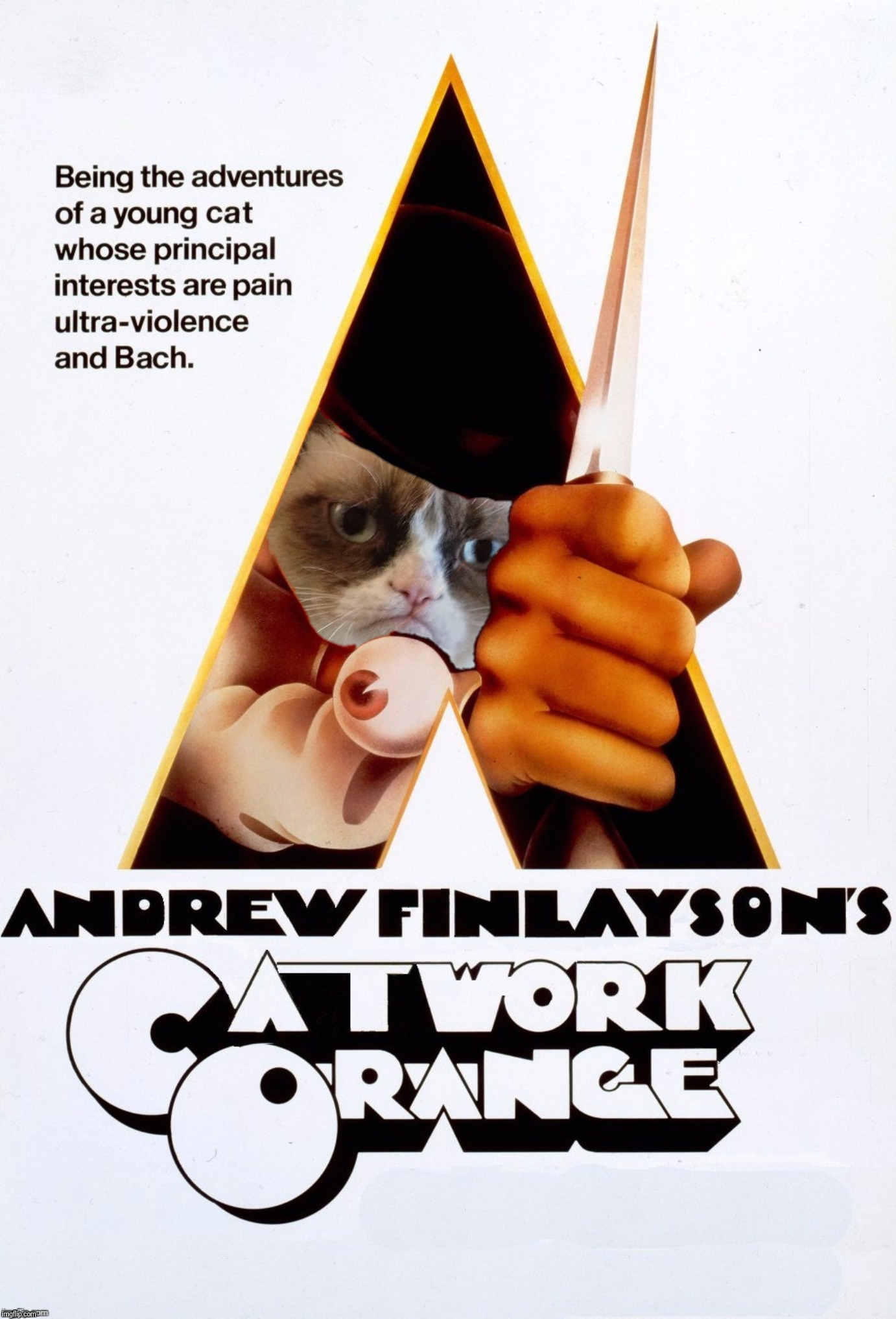 Catwork Orange | CATWORK ORANGE | image tagged in stanley kubrick,clockwork orange,movie poster,scumbag steve,show more,views | made w/ Imgflip meme maker