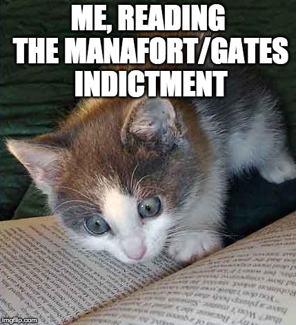 Reading cat | ME, READING THE MANAFORT/GATES INDICTMENT | image tagged in reading cat | made w/ Imgflip meme maker
