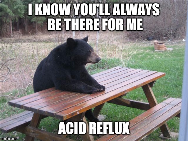 I KNOW YOU'LL ALWAYS BE THERE FOR ME ACID REFLUX | image tagged in bear lonely,memes | made w/ Imgflip meme maker