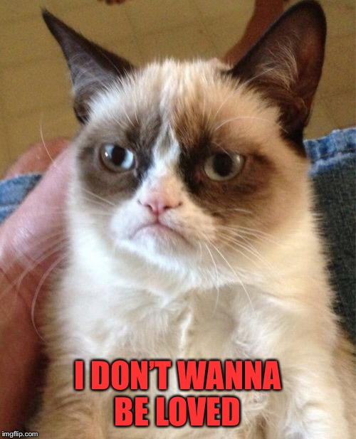 Grumpy Cat Meme | I DON'T WANNA BE LOVED | image tagged in memes,grumpy cat | made w/ Imgflip meme maker