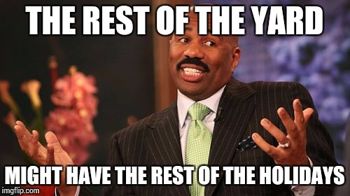 Steve Harvey Meme | THE REST OF THE YARD MIGHT HAVE THE REST OF THE HOLIDAYS | image tagged in memes,steve harvey | made w/ Imgflip meme maker