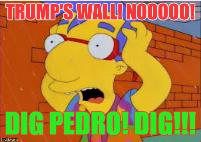 Title..title...should have a title... :D | TRUMP'S WALL! NOOOOO! DIG PEDRO! DIG!!! | image tagged in funny,memes,politics,simpsons,hamsters made of fire save the universe,trumps wall | made w/ Imgflip meme maker