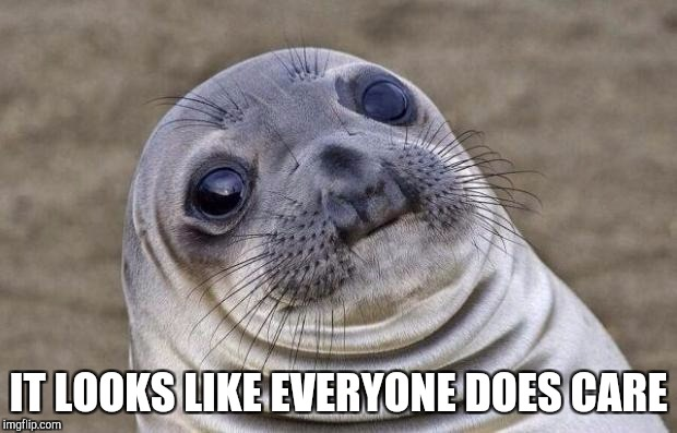 Awkward Moment Sealion Meme | IT LOOKS LIKE EVERYONE DOES CARE | image tagged in memes,awkward moment sealion | made w/ Imgflip meme maker