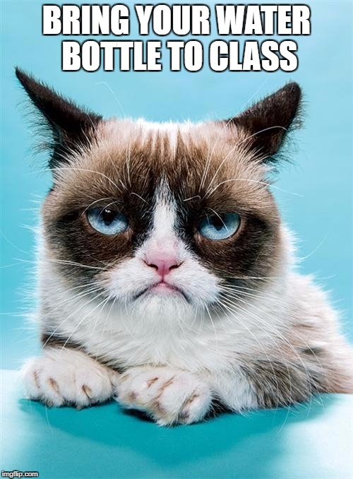 Grumpy Cat | BRING YOUR WATER BOTTLE TO CLASS | image tagged in grumpy cat | made w/ Imgflip meme maker