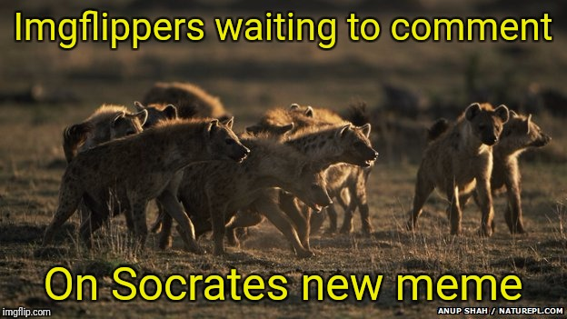 Imgflippers waiting to comment On Socrates new meme | made w/ Imgflip meme maker