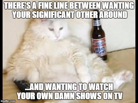 THERE'S A FINE LINE BETWEEN WANTING YOUR SIGNIFICANT OTHER AROUND ...AND WANTING TO WATCH YOUR OWN DAMN SHOWS ON TV | image tagged in cat watching tv with beer | made w/ Imgflip meme maker