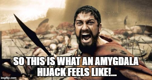 This is an  amygdala hijack!!!... | SO THIS IS WHAT AN AMYGDALA HIJACK FEELS LIKE!... | image tagged in memes,sparta leonidas,brain,philosophy,this is sparta,science | made w/ Imgflip meme maker