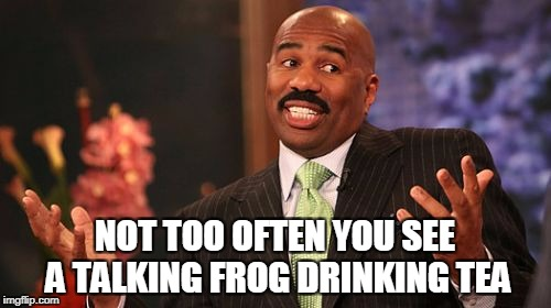Steve Harvey Meme | NOT TOO OFTEN YOU SEE A TALKING FROG DRINKING TEA | image tagged in memes,steve harvey | made w/ Imgflip meme maker