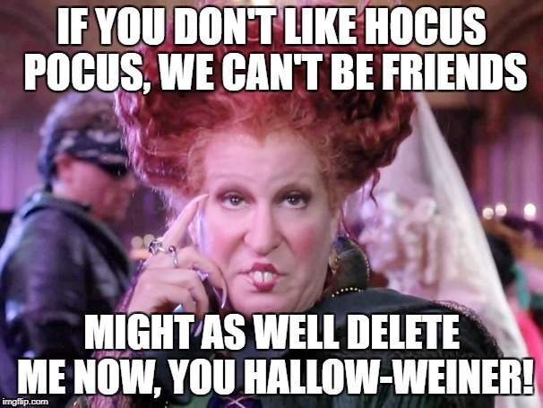 IF YOU DON'T LIKE HOCUS POCUS, WE CAN'T BE FRIENDS MIGHT AS WELL DELETE ME NOW, YOU HALLOW-WEINER! | image tagged in hocus pocus | made w/ Imgflip meme maker