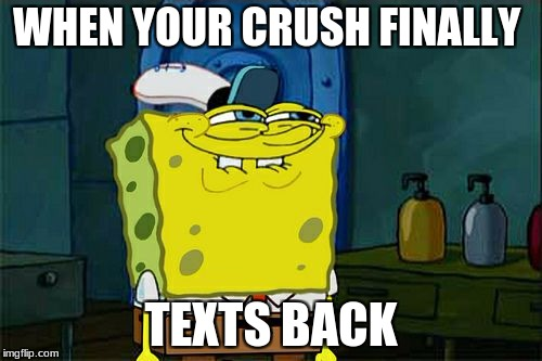 Dont You Squidward Meme | WHEN YOUR CRUSH FINALLY TEXTS BACK | image tagged in memes,dont you squidward | made w/ Imgflip meme maker