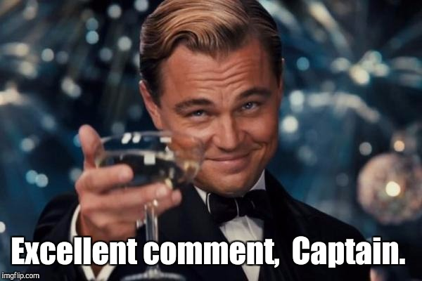 Leonardo Dicaprio Cheers Meme | Excellent comment,  Captain. | image tagged in memes,leonardo dicaprio cheers | made w/ Imgflip meme maker