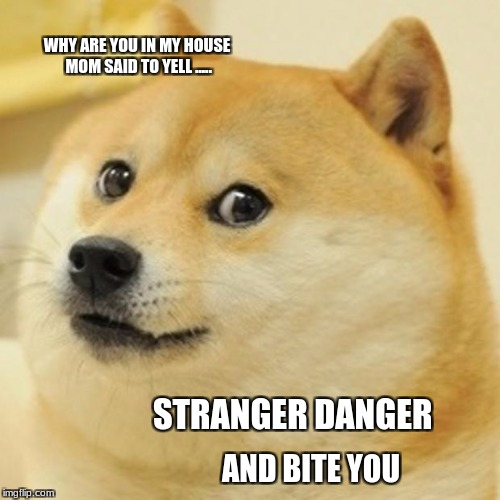 Doge Meme | WHY ARE YOU IN MY HOUSE MOM SAID TO YELL ..... STRANGER DANGER AND BITE YOU | image tagged in memes,doge | made w/ Imgflip meme maker