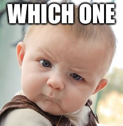 Skeptical Baby Meme | WHICH ONE | image tagged in memes,skeptical baby | made w/ Imgflip meme maker