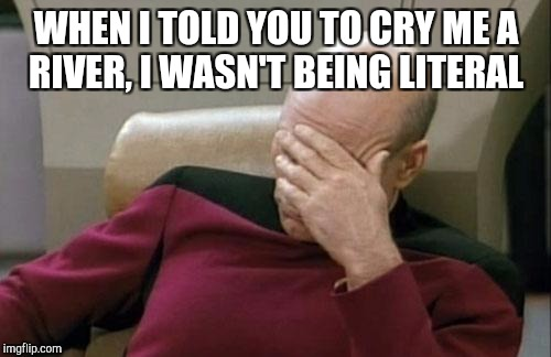 Captain Picard Facepalm Meme | WHEN I TOLD YOU TO CRY ME A RIVER, I WASN'T BEING LITERAL | image tagged in memes,captain picard facepalm | made w/ Imgflip meme maker