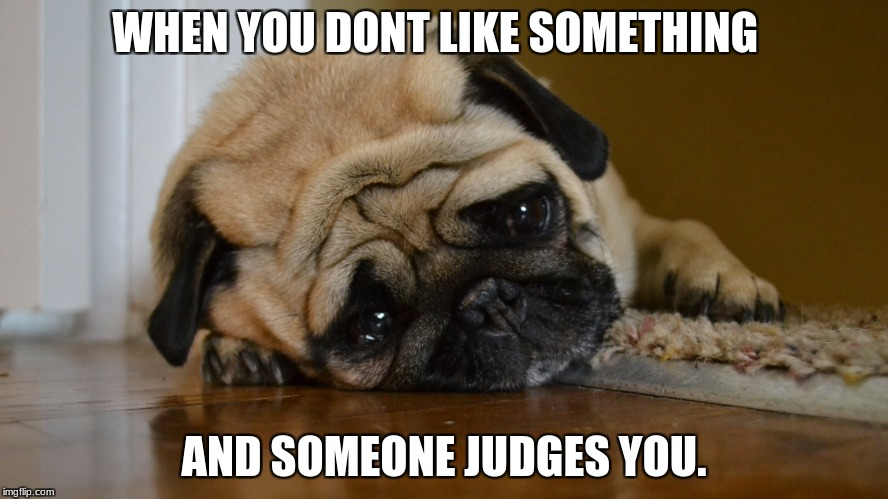 WHEN YOU DONT LIKE SOMETHING AND SOMEONE JUDGES YOU. | image tagged in sigh pup | made w/ Imgflip meme maker