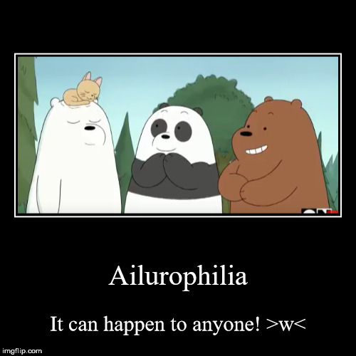 Ailurophilia | It can happen to anyone! >w< | image tagged in funny,demotivationals | made w/ Imgflip demotivational maker