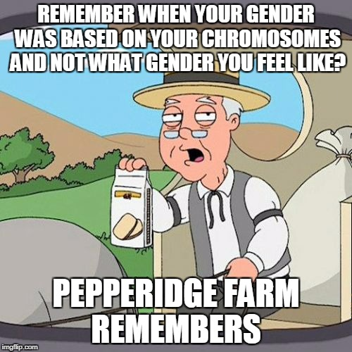 Pepperidge Farm Remembers Meme | REMEMBER WHEN YOUR GENDER WAS BASED ON YOUR CHROMOSOMES AND NOT WHAT GENDER YOU FEEL LIKE? PEPPERIDGE FARM REMEMBERS | image tagged in memes,pepperidge farm remembers | made w/ Imgflip meme maker