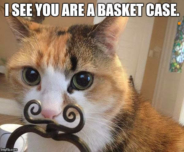 I SEE YOU ARE A BASKET CASE. | made w/ Imgflip meme maker