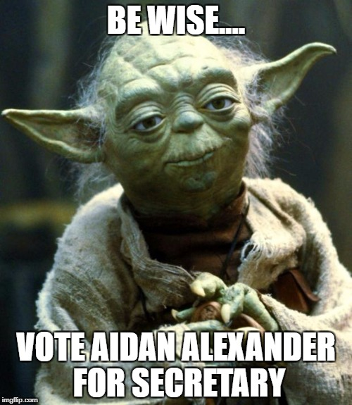 Star Wars Yoda Meme | BE WISE.... VOTE AIDAN ALEXANDER FOR SECRETARY | image tagged in memes,star wars yoda | made w/ Imgflip meme maker