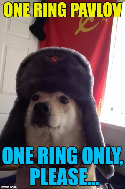 The Hunt For Red Setter... :) | ONE RING PAVLOV ONE RING ONLY, PLEASE... | image tagged in communist dog,memes,pavlov's dogs,dogs,animals,hunt for red october | made w/ Imgflip meme maker