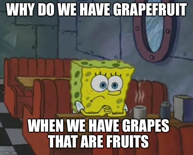 Spongebob Waiting | WHY DO WE HAVE GRAPEFRUIT WHEN WE HAVE GRAPES THAT ARE FRUITS | image tagged in spongebob waiting | made w/ Imgflip meme maker
