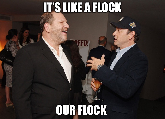 Weinstein Spacey Party | IT'S LIKE A FLOCK OUR FLOCK | image tagged in weinstein spacey party | made w/ Imgflip meme maker