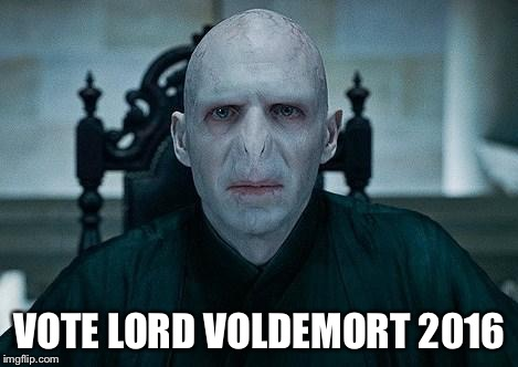 Lord Voldemort | VOTE LORD VOLDEMORT 2016 | image tagged in lord voldemort,election 2016,donald trump | made w/ Imgflip meme maker