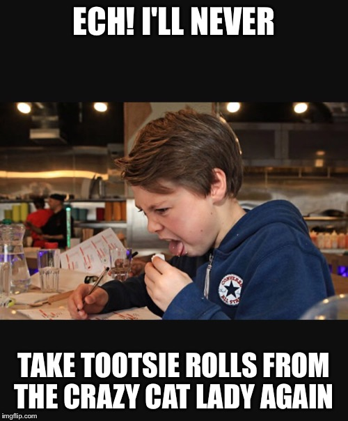 ECH! I'LL NEVER TAKE TOOTSIE ROLLS FROM THE CRAZY CAT LADY AGAIN | image tagged in halloween,crazy cat lady,oh hell no,gross | made w/ Imgflip meme maker