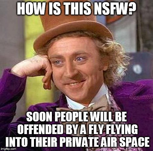 Creepy Condescending Wonka Meme | HOW IS THIS NSFW? SOON PEOPLE WILL BE  OFFENDED BY A FLY FLYING INTO THEIR PRIVATE AIR SPACE | image tagged in memes,creepy condescending wonka | made w/ Imgflip meme maker