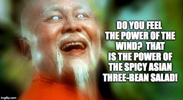It is time for you to leave! | DO YOU FEEL THE POWER OF THE WIND?  THAT IS THE POWER OF THE SPICY ASIAN THREE-BEAN SALAD! | image tagged in master po 2,memes | made w/ Imgflip meme maker