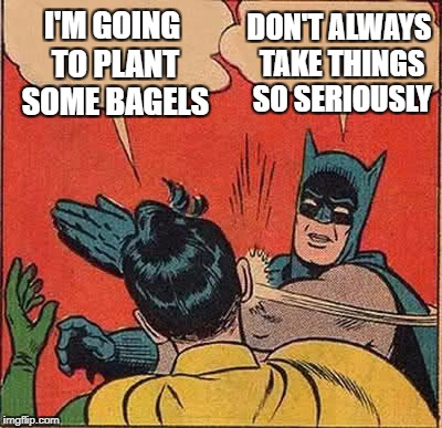 Batman Slapping Robin Meme | I'M GOING TO PLANT SOME BAGELS DON'T ALWAYS TAKE THINGS SO SERIOUSLY | image tagged in memes,batman slapping robin | made w/ Imgflip meme maker
