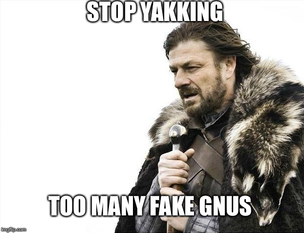 Brace Yourselves X is Coming |  STOP YAKKING; TOO MANY FAKE GNUS | image tagged in memes,brace yourselves x is coming | made w/ Imgflip meme maker