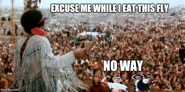 EXCUSE ME WHILE I EAT THIS FLY NO WAY | image tagged in memes,bill and ted,jimi hendrix,woodstock,funny memes | made w/ Imgflip meme maker